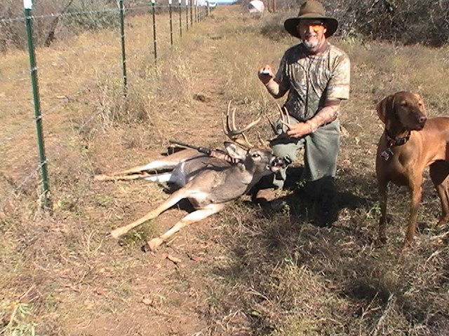 Great Looking 12 Point